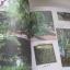 I Love Garden Vol. 8 Make Me Garden จัดสวนด้วยใจแบบไม่สำเร็จรูป โดย ทิพาพรรณ ศิริเวชฏารักษ์และวรัปศร อัศนียุทธ thumbnail 9