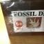 ชุดกระเป๋าขุดฟอสซิลและนำโครงกระดูกมาประกอบ(DinoSaur Adventure) thumbnail 9