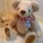 ตุ๊กตาหมีผ้าขนสีครีมขนาด 22 cm. - Ivy thumbnail 4