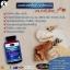 auswelllife glucosamine 1500 mg กลูโคซามีน thumbnail 25