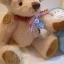 ตุ๊กตาหมีผ้าขนสีครีมขนาด 22 cm. - Ivy thumbnail 1